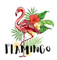 summer background with pink flamingo vector image vector image