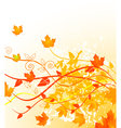 autumn gold vector image vector image