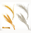 ears of wheat 3d realism and engraving styles vector image vector image