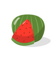 ripe watermelon isolated on white background vector image