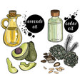 set organic ingredients for cosmetic vector image vector image