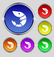 Shrimp seafood icon sign Round symbol on bright vector image