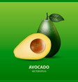 3d realistic half and whole avocado with vector image