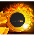 autumn shine background with yellow leaves vector image vector image