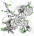 background design with lemon and mint vector image vector image