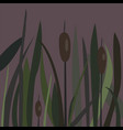 bush of swamp reed on a lake vector image
