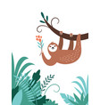 cute adorable sloth hanging on branch tree vector image vector image