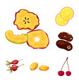 fruit and dried sign set vector image