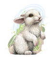 rabbit color artistic graphic image a rabbit vector image vector image
