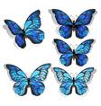 Set Blue Butterflies Morpho vector image vector image