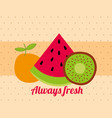 always fresh nature nutrition fruits watermelon vector image vector image