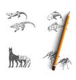 bio robots - robot fish dog spider vector image vector image