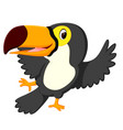 cartoon bird toucan dancing vector image vector image