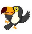 cartoon bird toucan dancing vector image