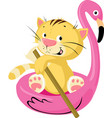 cute cat swims floating on an inflatable flamingo vector image