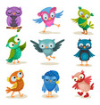 cute colorful owlets set sweet owl birds cartoon vector image vector image