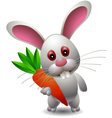 cute rabbit cartoon with carrot vector image vector image