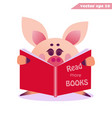 funy cartoon pig with the book vector image vector image