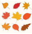 set autumn doodle leaves vector image vector image