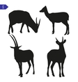 silhouettes of wild goats vector image