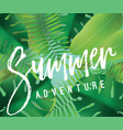 summer adventure background for posters vector image
