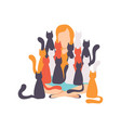 woman sitting on the floor surrounded by many cats vector image vector image