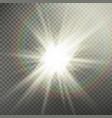 sunlight special lens flare light effect light vector image
