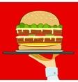 account american art beef bektashi big bread bun vector image