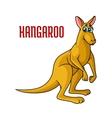 Cartoon kangaroo character vector image