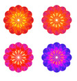 a set of buds colorful flower vector image vector image