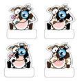 Cow Camera vector image vector image