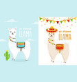 cute cartoon llama alpaca vector image vector image