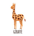cute giraffe in flat style vector image vector image