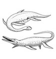 dinosaurs elasmosaurus mosasaurus skeletons vector image vector image