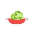 flat cabbage on plate icon vector image