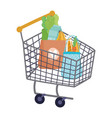 shopping cart with bags full food isolated vector image