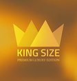 Abstract crown vector image vector image