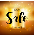 Autumn sale design template with sparkles and gold vector image vector image