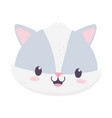 cute raccoon face animal cartoon isolated icon vector image