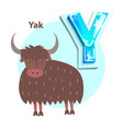 letter y is for yak cartoon alphabet for children vector image