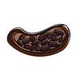 open cocoa fruit and beans icon image vector image vector image