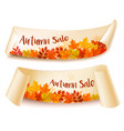 two autumn sale banners with colorful leaves vector image vector image