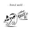 animal world fart dog background image vector image