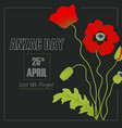 anzac day vector image