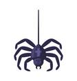 hanging spider happy halloween object cartoon vector image
