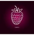 Raspberries in the Contours vector image
