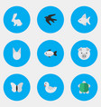 Set of simple fauna icons vector image