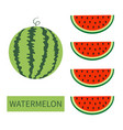 watermelon fruit icon set round water melon red vector image vector image