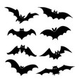 bat bird animal silhouette black icon vector image vector image