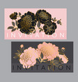 concept black and pale rose peony flower vector image